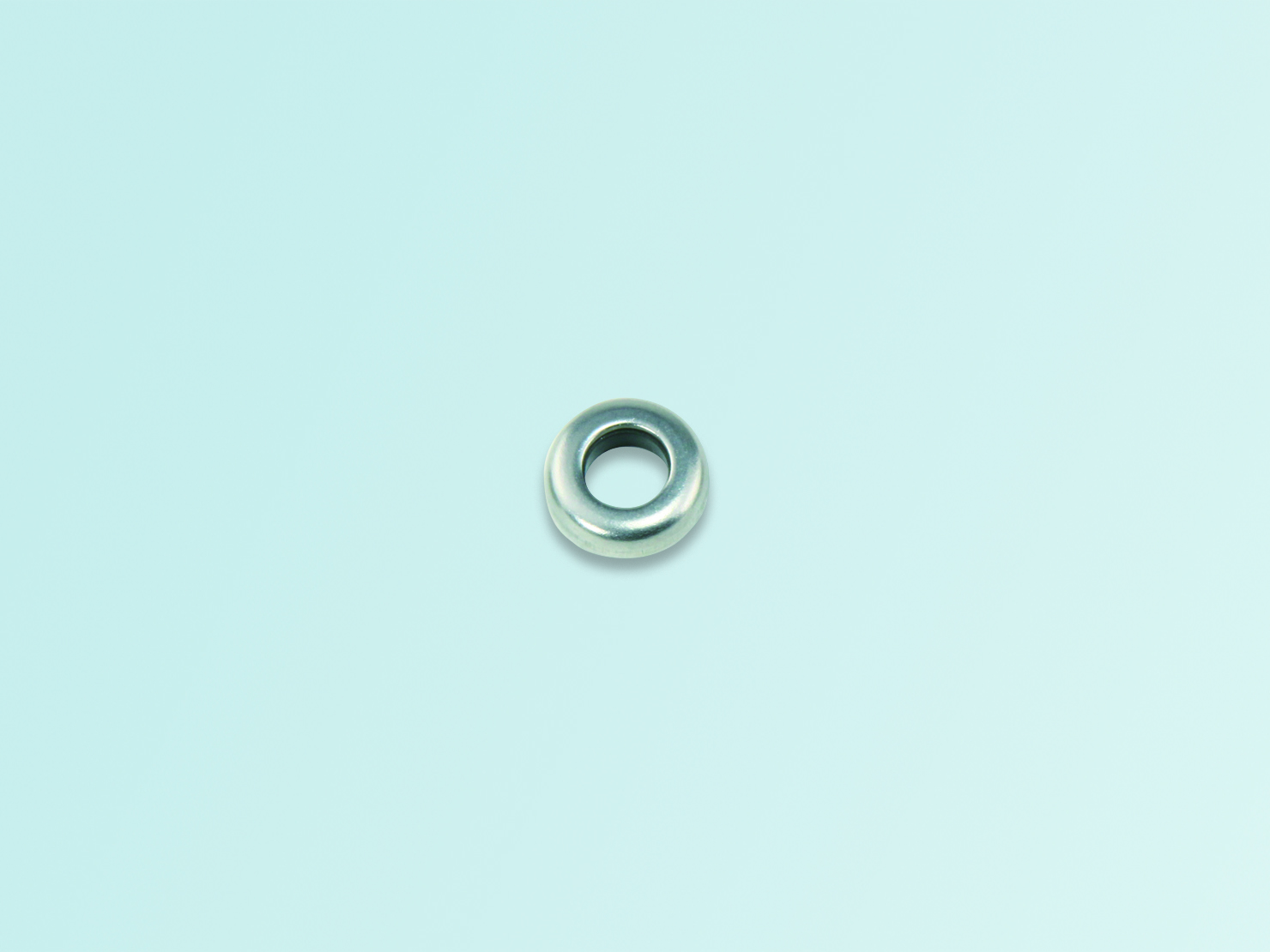 Stainless Seal Washer