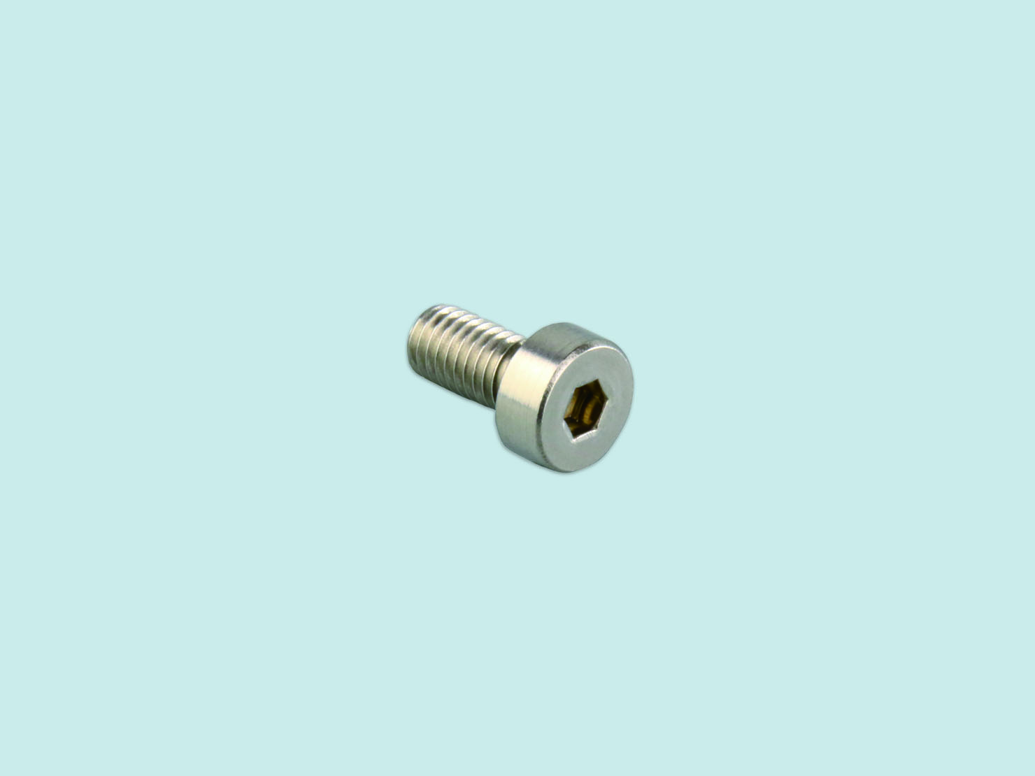 Stainless Seal Screw